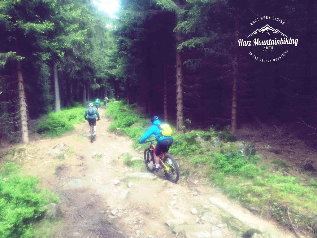 harz mountainbike trails